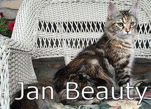 1A_Jan Beasuty